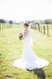 vineyard-bridal-portraits