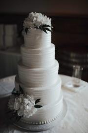 sassafras-springs-wedding